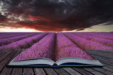 Creative Concept Pages of Book Stunning Lavender Field Landscape Summer Sunset under Moody Red Stor Prints by  Veneratio
