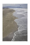 Ocean Beach, San Francisco, CA 2 (Surf, Sand, Shoreline, California Coast, Pacific Ocean) Photographic Print by Henri Silberman