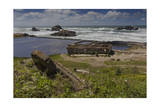 Sutro Baths Ruins, San Francisco, CA 1 (Seashore Landmark) Photographic Print by Henri Silberman