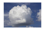 White Cloud, Blue Sky (Round Cumulonimus Cloud) Photographic Print by Henri Silberman