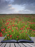 Creative Concept Idea of Poppy Field Landscape Coming out of Pages in Magical Book Prints by  Veneratio