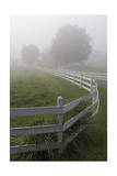 White Fence and Grasses, Chapel Hill, NC (Fog) Photographic Print by Henri Silberman