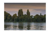 Sunset Skulling on Thames River, London (Exercise, Water Recreation, Hammersmith) Photographic Print by Henri Silberman