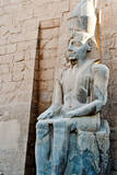 Ancient Statue in Luxor Temple, Egypt Photographic Print by  Asier