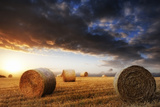 Beautiful Golden Hour Hay Bales Sunset Landscape Photographic Print by  Veneratio