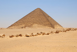 Red Pyramid Photographic Print by Tom Schwabel