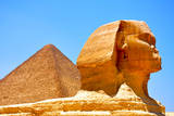 Great Sphinx of Giza Photographic Print by Taylor Buckman