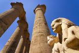 Statues of Egyptian Pharaohs, Karnak Temple, Egypt Photographic Print by Nico Tondini