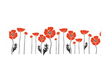 Stylish Red and Black Poppies on White Background Posters by Alisa Foytik