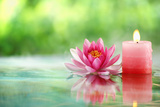 Burning Candle and Water Lily in Water. Photographic Print by Liang Zhang