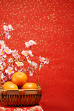 Chinese New Year Decoration--A Basket of Oranges with Plum Flower on a Festive Background. Posters by Liang Zhang