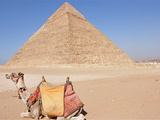 Camel and Classic Pyramid Photographic Print by Louise Bleakly