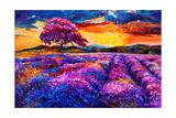 Lavender Fields Posters by Boyan Dimitrov