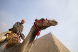 Tourist on Camel near Pyramid. Photographic Print by Holger Leue