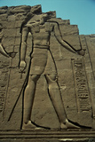 El Dios Horus Photographic Print