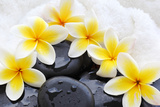 Spa Still Life with Frangipani Flowers,White Towel and Zen Stone Photographic Print by Liang Zhang