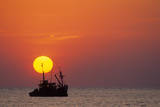 Fishing Boat at Sunset Photographic Print by David Cayless