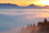 High Fog in the Bavarian Allgau, Autumn Photographic Print by Ingmar Wesemann