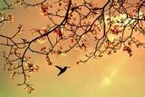 Bird Singing in the Morning Sky Impressão fotográfica por  Autumnn