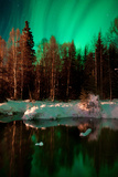 Reflecting on Dream - Alaskan Northern Lights Photographic Print by Mike Berenson / Colorado Captures