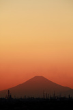 Asian Dust Photographic Print by Damon Bay