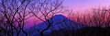 Mt.Fuji Photographic Print by  huayang