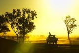 Silhouetted Cattle Muster at Sunset, Armraynald Station. Lámina fotográfica por Johnny Haglund