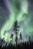 Aurora, Kiruna, Sweden, Scandinavia Photographic Print by David Clapp