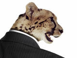 Cheetah in Business Suit Photographic Print by Richard Newstead