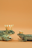 Frog and Lizard Wearing Crowns Photographic Print by Walter B. McKenzie