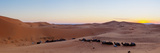 Sunset over Tents & Camels in the Sahara Desert Photographic Print by Doug Pearson