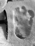 Big Foot Fotografisk tryk af Topical Press Agency