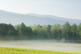 Meadow with Fog, Mountain Range in Background Photographic Print by Tony Sweet