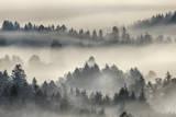 Morning Mist above Kochelmoor. Photographic Print by Martin Ruegner