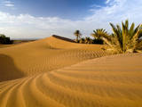 Sahara Desert at M'hamid, Morocco, Africa Photographic Print by Ben Pipe Photography