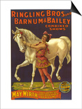 Ringling Bros Circus Barnum and Bailey, USA Posters