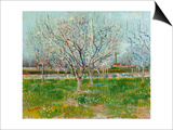 Blossoming Orchard, 1888 Print by Vincent van Gogh