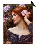 Vanity (Vanitas) Posters by John William Waterhouse
