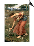 Narcissus, 1912 Prints by John William Waterhouse