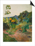 Martinique Landscape (Tropical Vegetation), 1887 Prints by Paul Gauguin