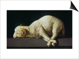 Agnus Dei (Lamb of God) Prints by Francisco de Zurbarán