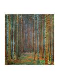 Tannenwald (Pine Forest), 1902 Prints by Gustav Klimt