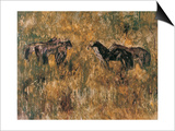 Horses in the Field Art by Wanqi Zhang
