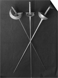 Fencing Weapons: Epee, Foil, Sabre Posters