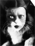 Me and Cat', Two Superimposed Photos of Wanda Wulz and of Her Cat Prints by Wanda Wulz