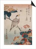 Gros-bec et mirabilis Print by Katsushika Hokusai