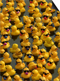 The Make-A-Wish Foundation Releases Rubber Ducks into the Ocean Print