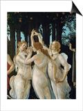 La Primavera, the Three Graces Art by Sandro Botticelli
