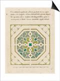 Modèle de parterre de jardin octogonal Posters
