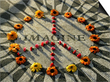 A Makeshift Peace Sign of Flowers Lies on Top John Lennon's Strawberry Fields Memorial Posters